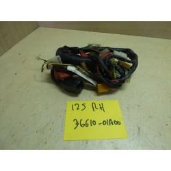 FAISCEAU ELECTRIQUE 125 RH