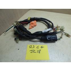 FAISCEAU ELECTRIQUE 125 CG