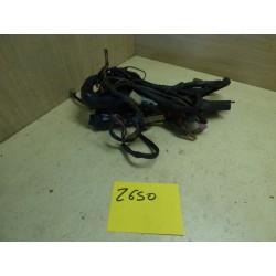 FAISCEAU ELECTRIQUE Z 650
