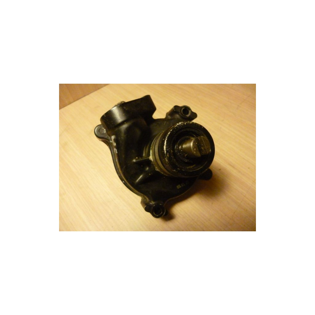 Pompe a eau 750 gpz for Pompe chauffante